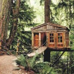 www.treehouseworkshop.com