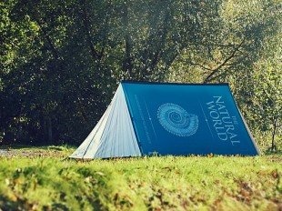 www.fieldcandy.com
