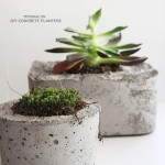 diy-concrete-outdoor-planters11-500x636