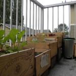 wood-garden-box