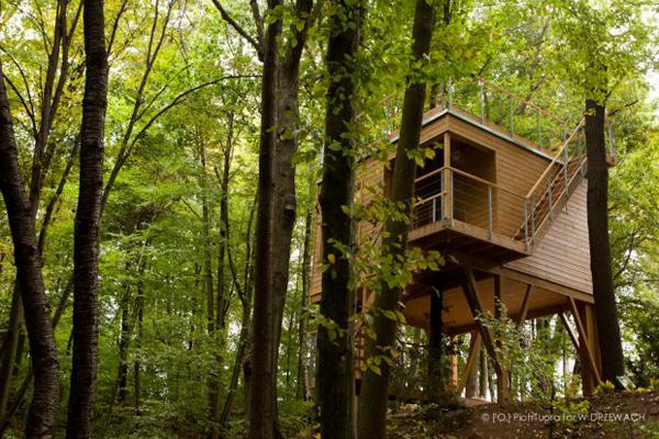 hotel na drzewie w Nałęczowie