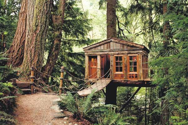 www.treehouseworkshop.com